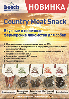 Листовка-А5_Meat-Snack-1.png